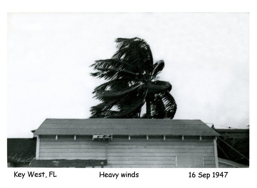 Photo - Hurriccan heavy winds